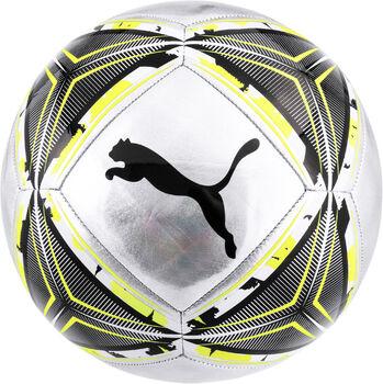 Puma SPIN Ball Grau