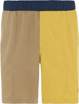 The North Face Class V Pull On Badeshorts Herren Gelb