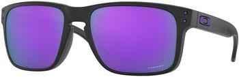 Oakley Holbrook Sonnenbrille Herren Schwarz