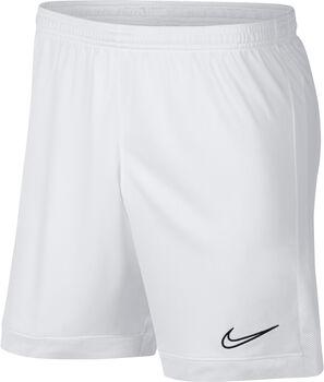 Nike Dri-FIT Academy Fussballshorts Herren Weiss