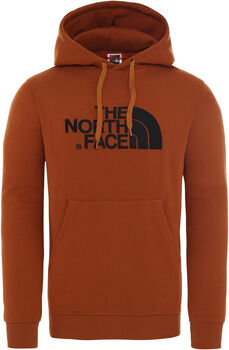 The North Face DREW PEAK Kapuzenpullover Herren Braun