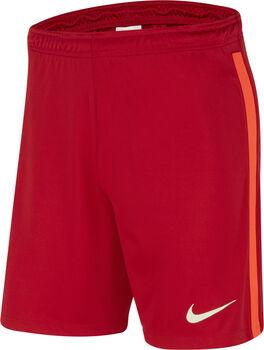 Nike FC Liverpool Home Fussballshorts Herren Rot
