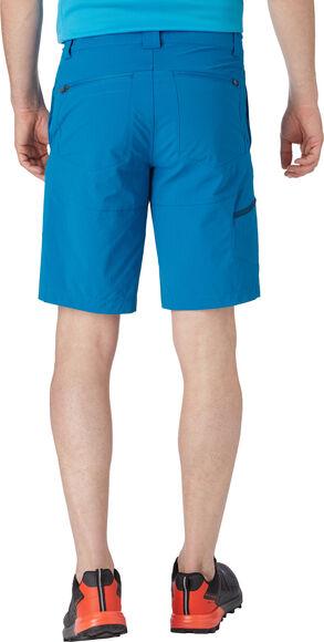 Active Cameron II Shorts
