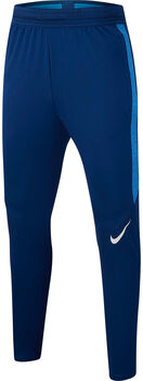 Nike Dri-FIT Strike Trainingshosen Blau