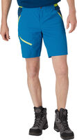 Brenton Shorts