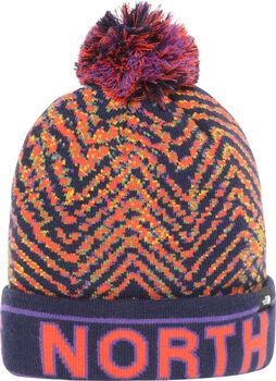 The North Face Ski Tuke bonnet  Multicolore