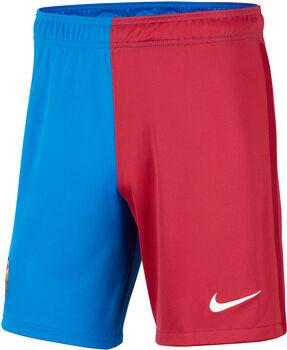 Nike FC Barcelona Fussballshorts Herren Blau