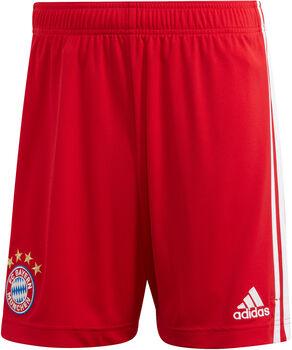 adidas FC Bayern München Heimshorts Herren Rot