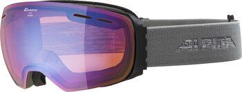 ALPINA Granby HM Lunettes de ski Hommes Gris