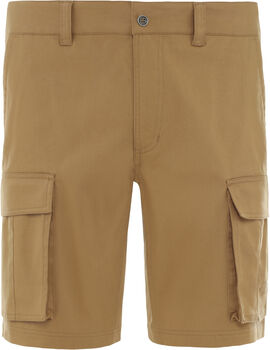 The North Face Anticline Cargo Shorts Hommes Brun