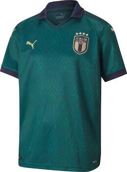 Puma Italia Third Shirt Fussballtrikot Grün