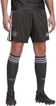 adidas Manchester United Auswärtsshorts Herren Grün