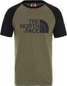 The North Face Easy T-Shirt Herren Grün