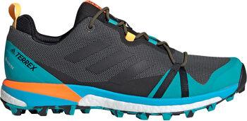 adidas TERREX Skychaser LT GTX chaussure Hommes Gris