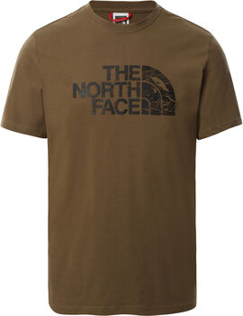 The North Face Wood Dome T-Shirt Herren Grün