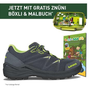 Lowa INNOX PRO GTX LO LACING Outdoor-Schuh Blau