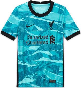 Nike FC Liverpool 20/21 Away Fussballtrikot Grün