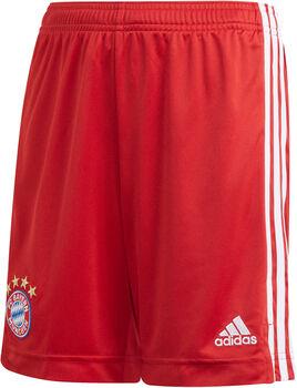 adidas FC Bayern München Home Fussballshorts Rot