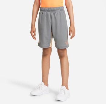 Nike Dri-FIT Graphic Trainingsshorts
