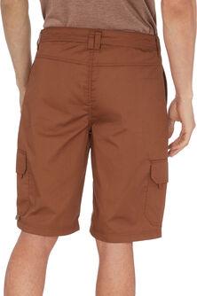 Geary III Shorts