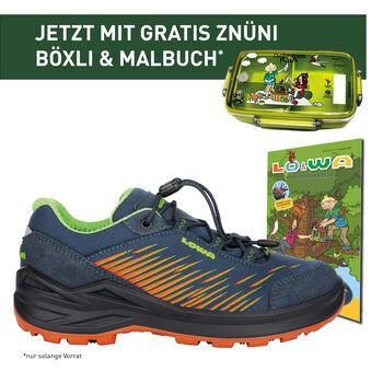 Lowa ZIRROX GTX LO Outdoor-Schuh Blau