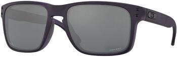 Oakley Holbrook Sonnenbrille Herren Grün