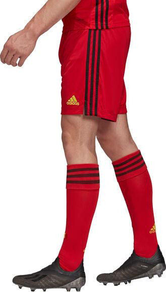 Belgium Home Replica short de football