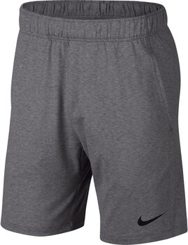 Nike Dri-FIT Trainingsshorts Herren Grau