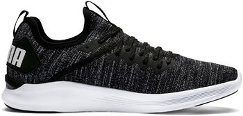 Puma Ignite Flash evoKNIT Chaussure de fitness Hommes Noir