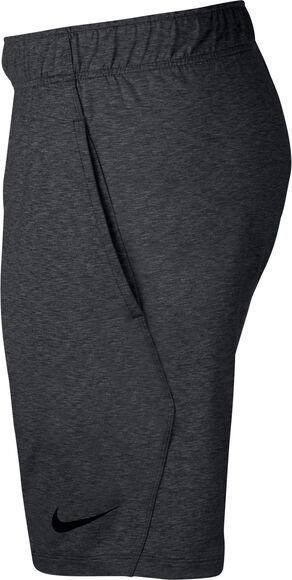 Dri-FIT Shorts d'entraînement