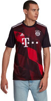 FC Bayern München 20/21 3R Fussballtrikot
