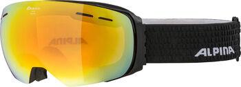 ALPINA Granby HM Lunettes de ski Hommes Noir