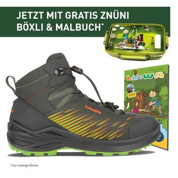 Lowa ZIRROX GTX MID Chaussure de randonnée Gris