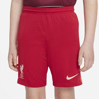 Nike FC Liverpool Home Fussballshorts Rot
