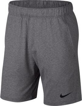 Nike Dri-FIT Shorts d'entraînement Hommes Gris